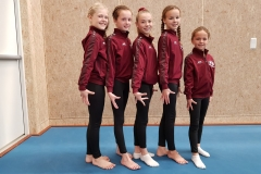 Alle-finale-turnsters